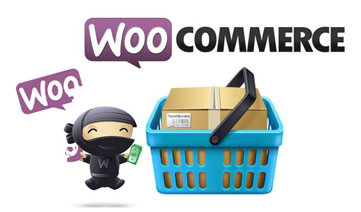 Giới thiệu nhanh về Plugin Woocommerce.