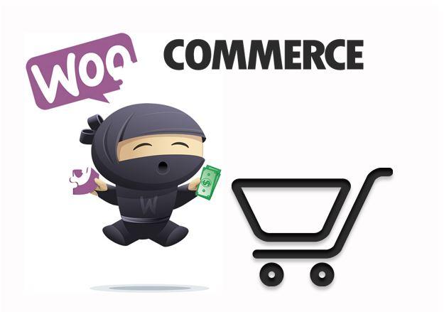 Woocommerce là gì? Tổng quan Plugin Woocommerce của WordPress